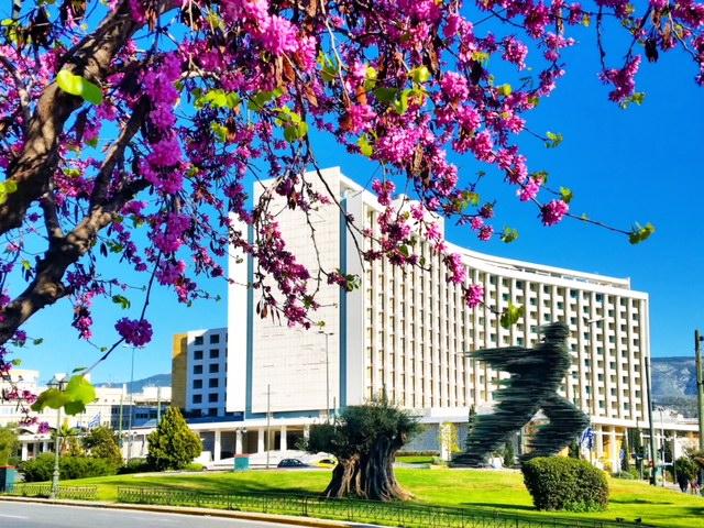 Hilton Spring